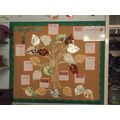 We worked as a class to make our material tree.