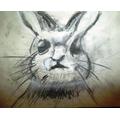 Florrie's rabbit