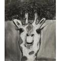 Emily's giraffe