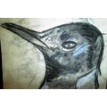 Oliver's penguin