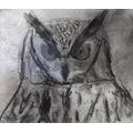 Jacob's owl