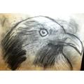 Jamie's eagle