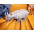 Joshua's rhinosaurus