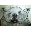 Bethany's polar bear