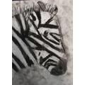 Elinor's zebra