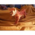 Emma's cheetah