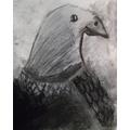 Sam's eagle