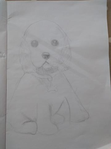 Aidan's Dog Sketch