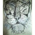Poppy's tiger