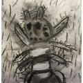 Albert's spider