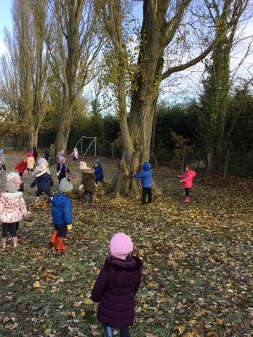 Catching falling leaves!