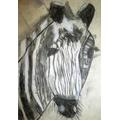 Amelie's zebra