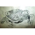 Thomas' frog