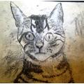 Alice's cat