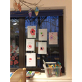 Our poppy pictures
