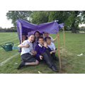 Year 4 shelter building