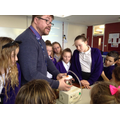 Year 6 Science at Eastwood Academy
