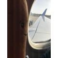 Homeward bound! Sniff!
