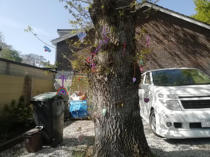 Lexie's cheery tree