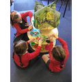 Enquiry - Creating trees and learning about how they change through the seasons