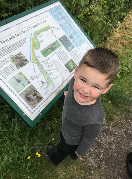Exploring nature around the canal