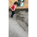 Outdoor area - Learning about the parts of a tree