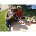 Discovering animals and minibeasts