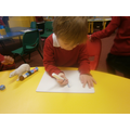We measured polar animals and recorded them