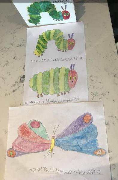 Super reading and sentence writing about butterflies