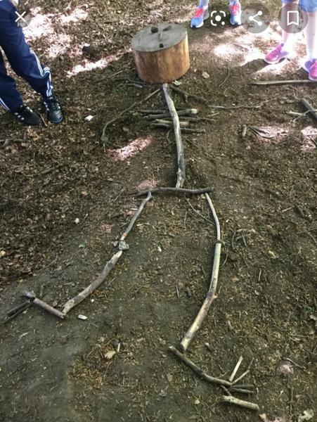 Stick skeletons