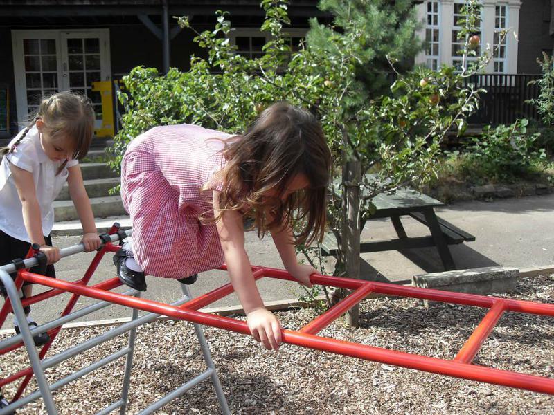Climbing and balance skills