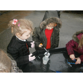 We did ice experiments to rescue the animals