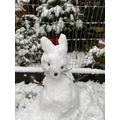 Mrs Jones' snow rabbit
