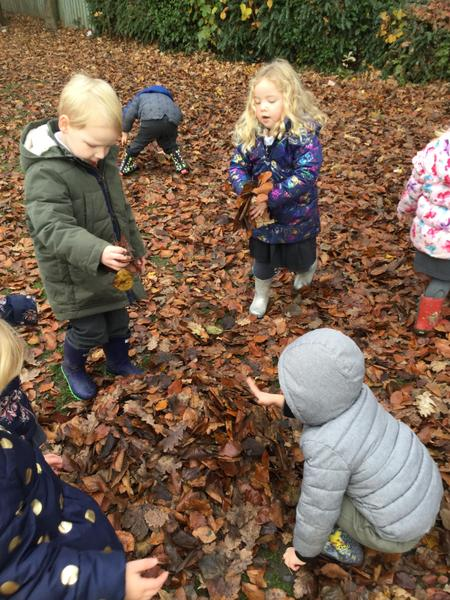 Collecting leaves...