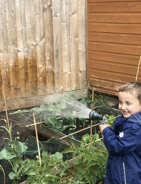 Watering my vegetables