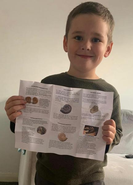 Finding out facts about fossils and precious stone