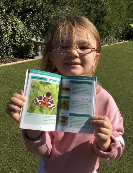 Reading information books about butterflies