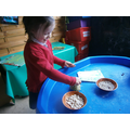 Learning about seeds and planting