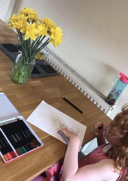 Observational drawings of daffodils