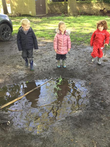A brilliant puddle!