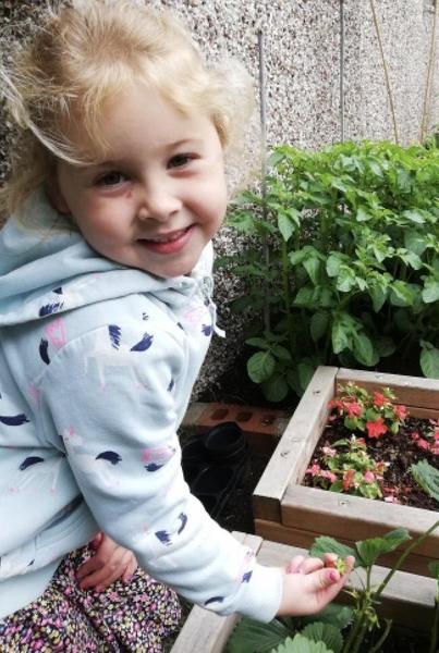Home grown strawberries 🍓