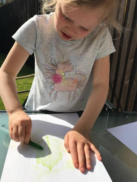 Leaf 🍃 rubbings