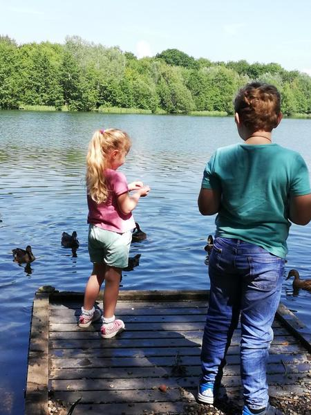 Visiting the duck pond