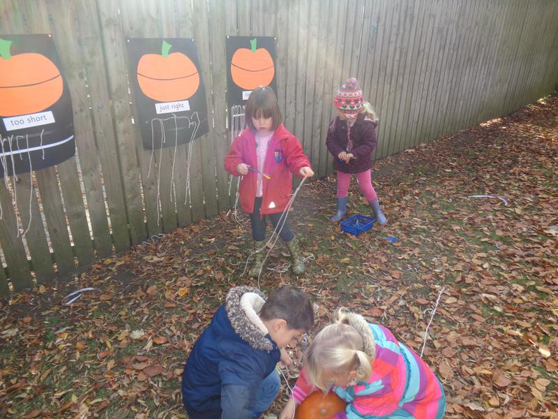 Estimating the circumference of the pumpkin