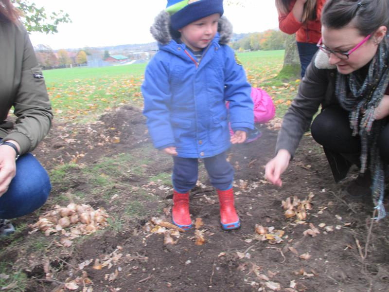 Mummy helped to plant too.