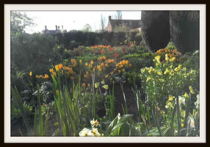 Anna, Mouse: Lots of flowers at Sissinghurst