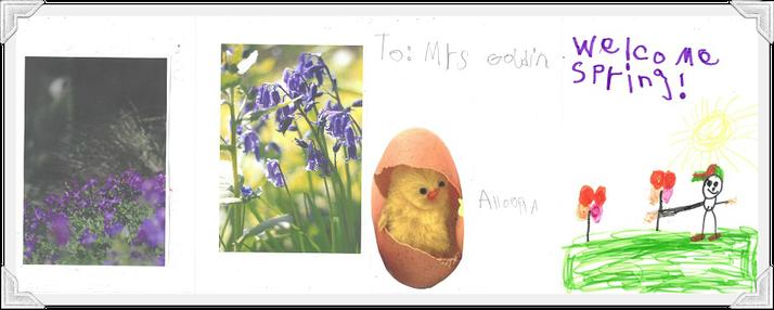 Ahoora in Hedgehog Class pictures of Spring