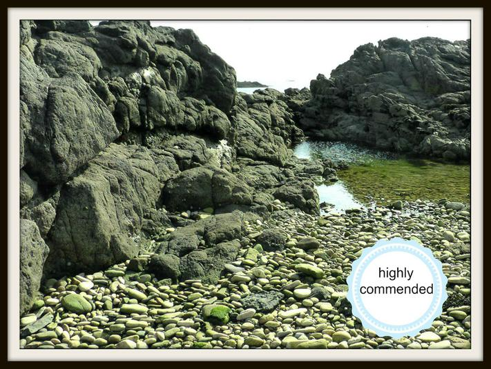 Milo, Otter: Beautiful rocks and water on holiday