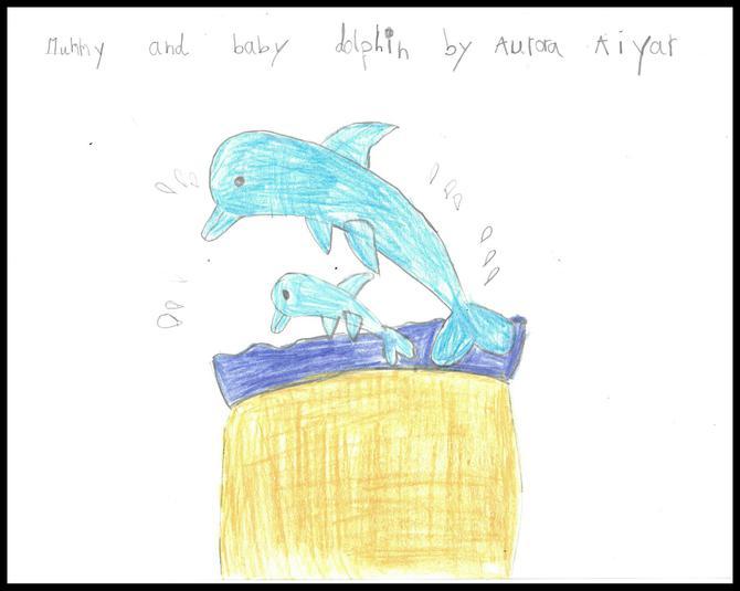 Aurora in Hedgehog Class