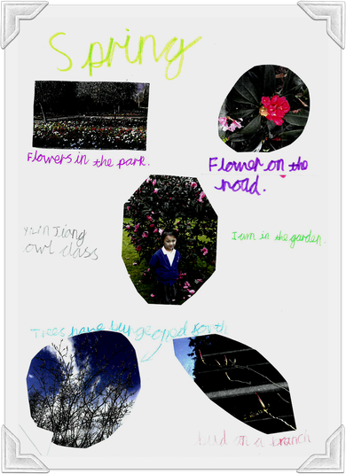 Signs of Spring from YiLin in Owl Class